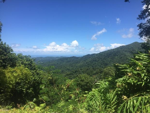 El Yunque overlook