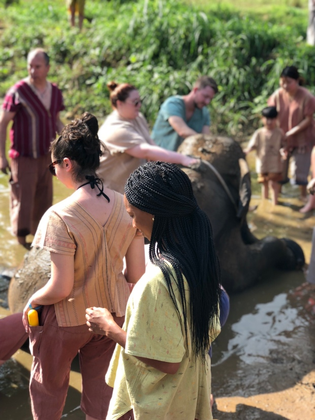 Mud baths with the elephants